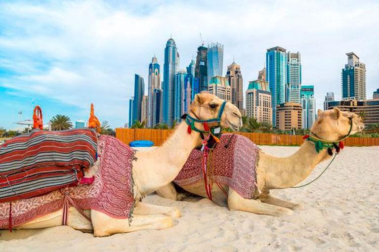DUBAI – 8 DIAS
